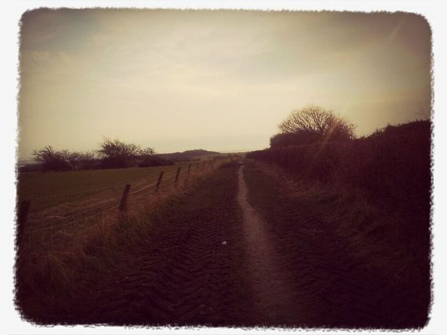 Walking Around Walking Field Path
