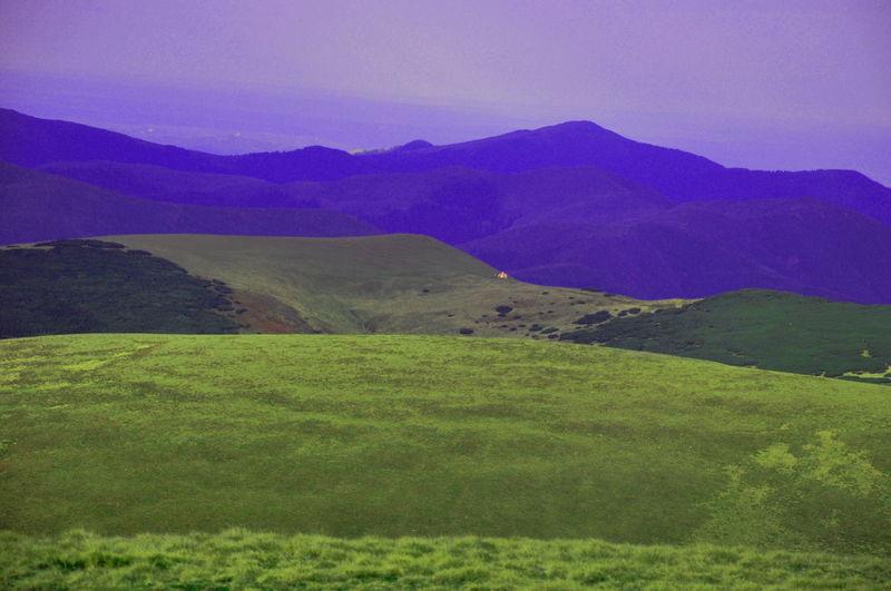 Mountain View Landscape_Collection Naturephotography Beautiful Nature Pinus Mugo Refuge