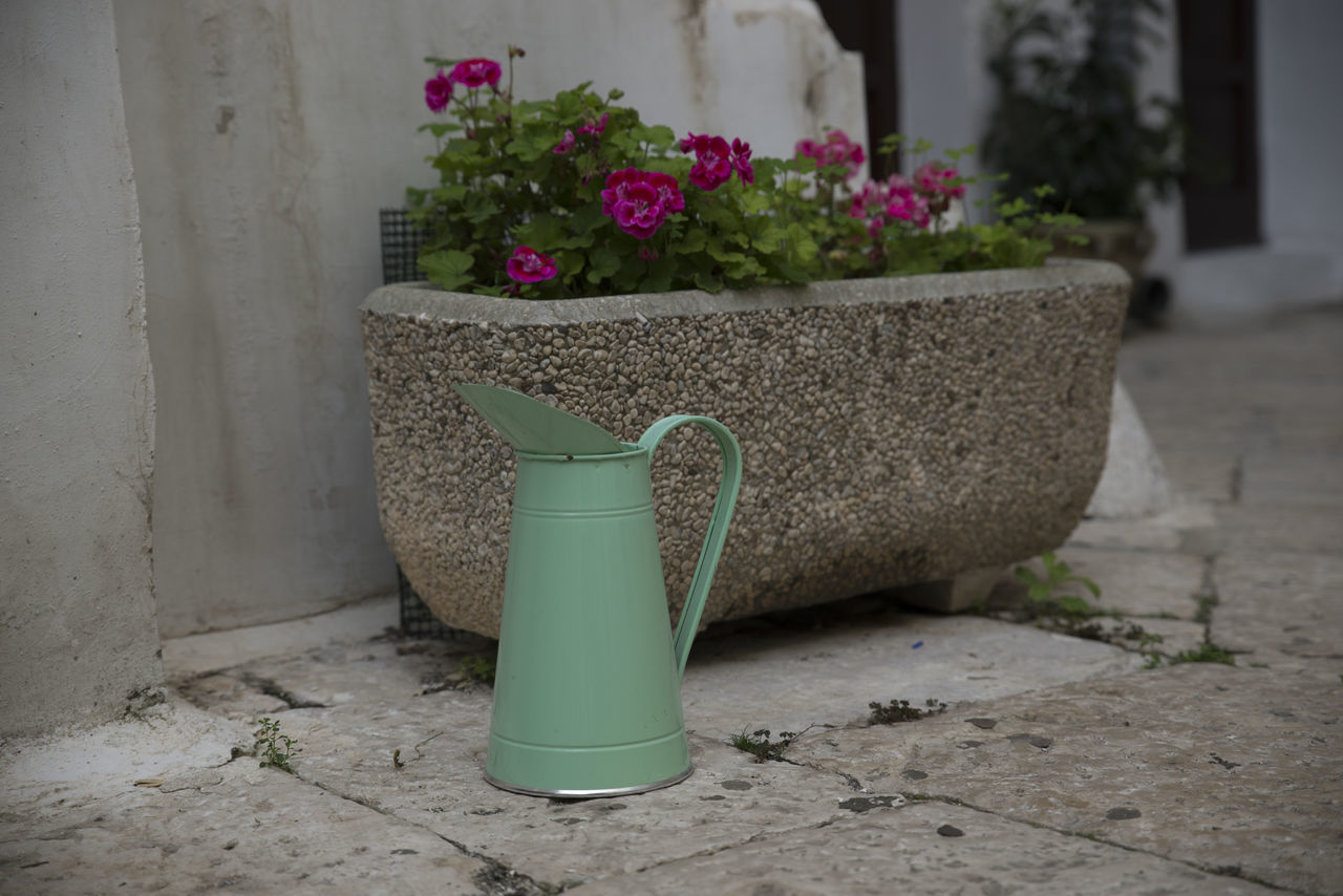 Architecture Day Flower Mint Colored No People Outdoors Plant Potted Plant Watering Can