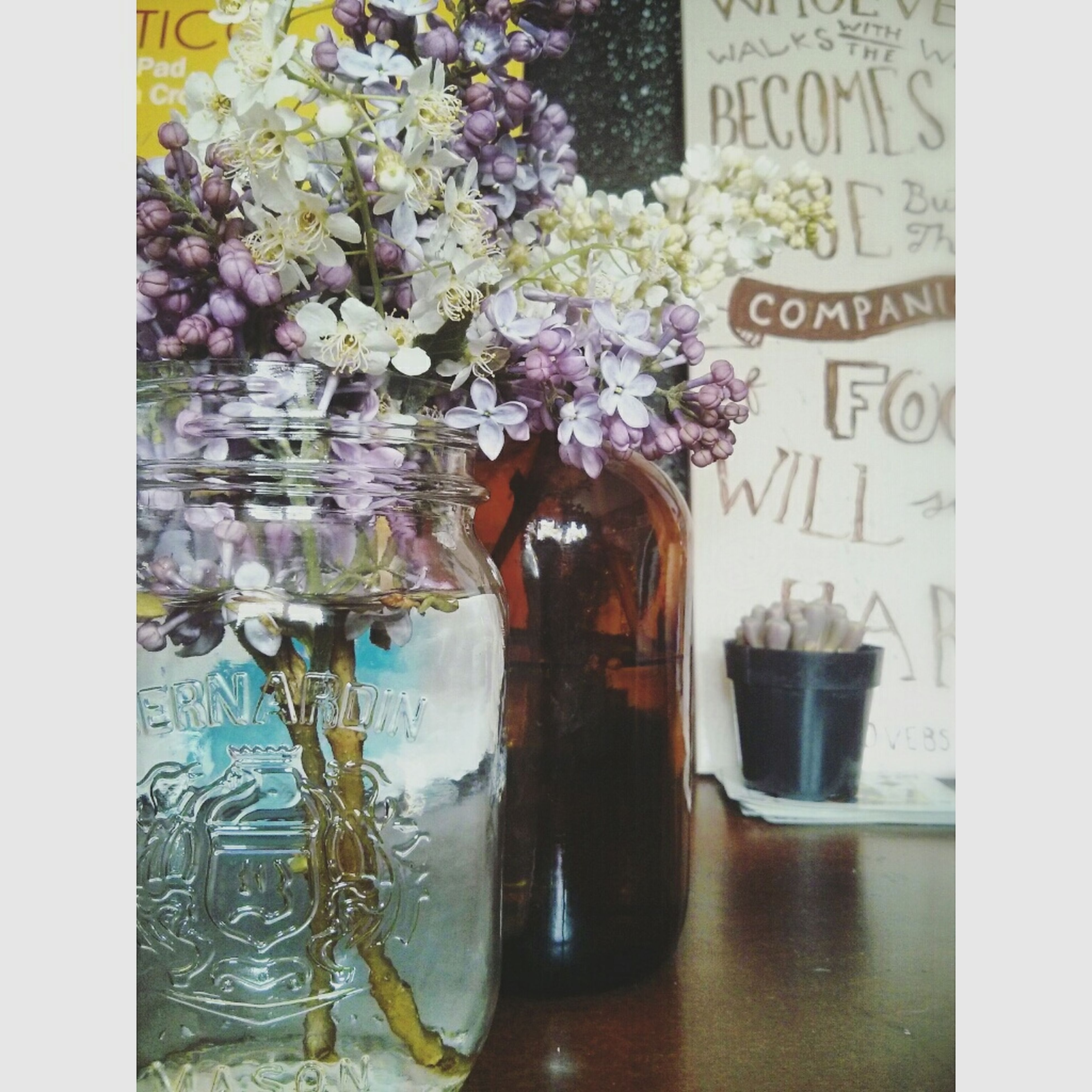transfer print, auto post production filter, indoors, flower, text, table, freshness, western script, still life, close-up, no people, potted plant, vase, day, communication, glass - material, plant, wall, jar, high angle view