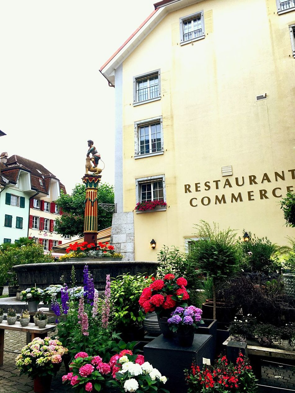 Switzerland Solothurn City Center Flowershop Bautiful Day Fontain Old Town Check This Out Taking Photos Enjoying Life Colourful Have A Nice Day♥ Switzerlandpictures Day Out With Family Day Out