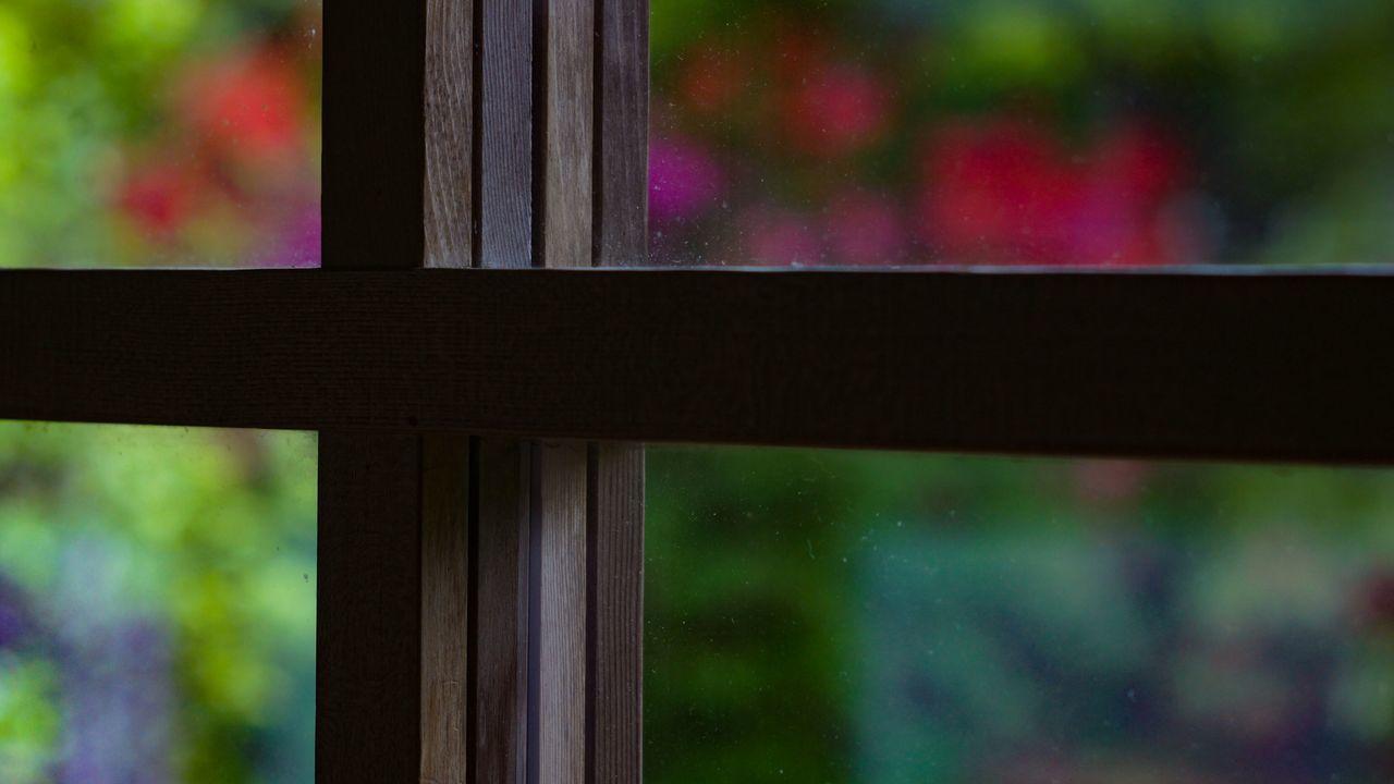 Window Multi Colored Day Close-up Buddhist Temple Nex5 Smc Takumar 55mm F1.8 Kyoto