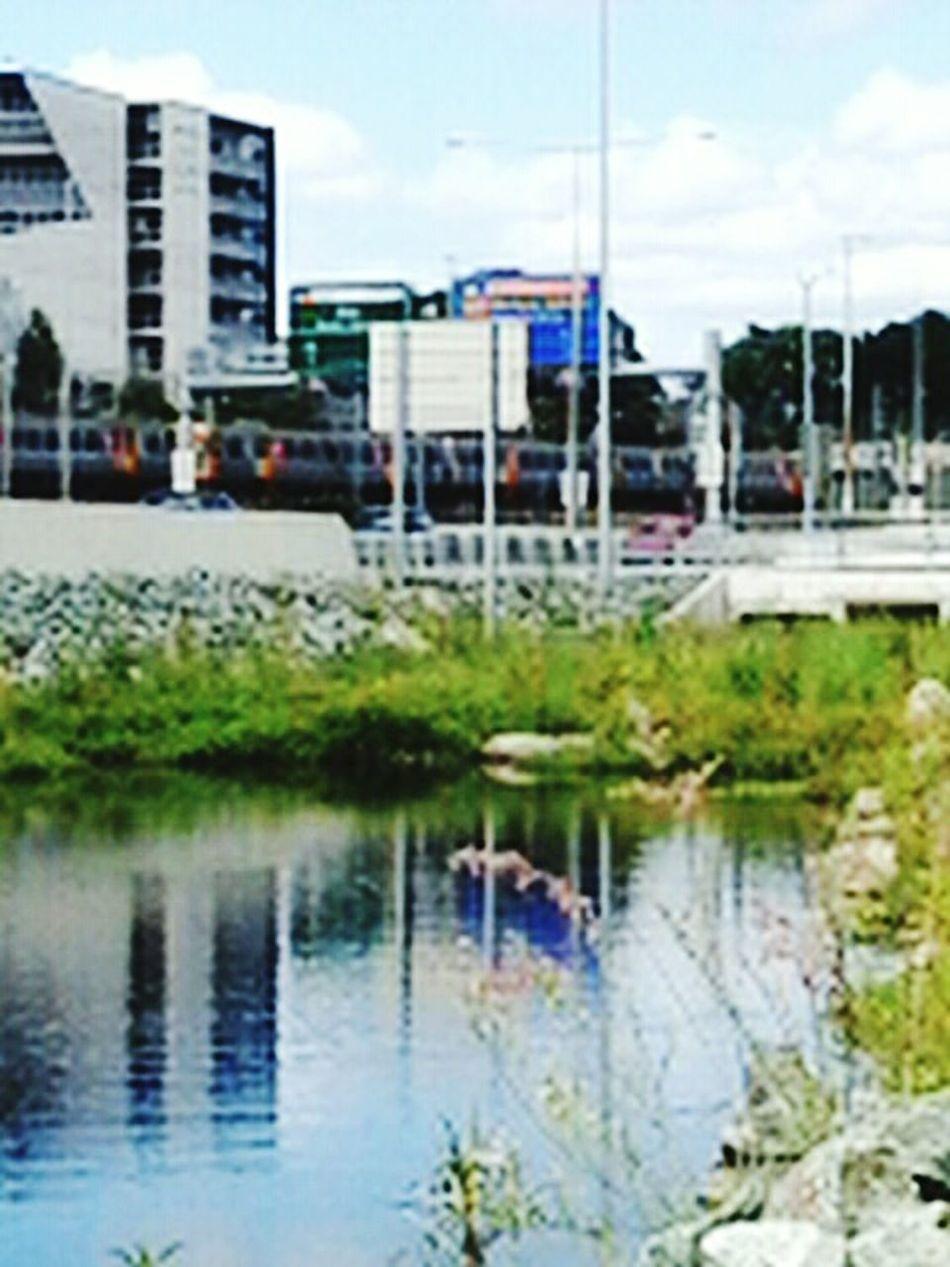 Hanging Out Freelance Life Brisbanestyle Enjoying Life The Changing City