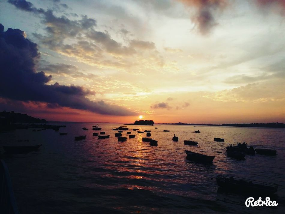 Perfect sunset click..... First Eyeem Photo Nature Picture Wallpaper Nature Pic's World Beauty Nature Photo Collection Nature_perfection Nature_collection Nature Photography Beauty Of Nature Beatuty Of Nature Beauty In Nature Sunset Sunlight sunset #sun #clouds #skylovers #sky #nature #beautifulinnature #naturalbeauty photography landscape sunset #sun #clouds #skylovers #sky #nature #beautifulinnature #naturalbeauty photography landscape sunset #sun #clouds #skylovers #sky #nature #beautifulinnature #naturalbeauty photography landscape sunset #sun #clouds #skylovers #sky #nature #beautifulinnature #naturalbeauty photography landscape Sunset And Clouds  Sunset_captures Sunset View. River View Riverboat sunset #sun #clouds #skylovers #skyporn #sky #beautiful #sunset #clouds and sky #beach sun _collection sunst and clouds Sunset✨trees✨
