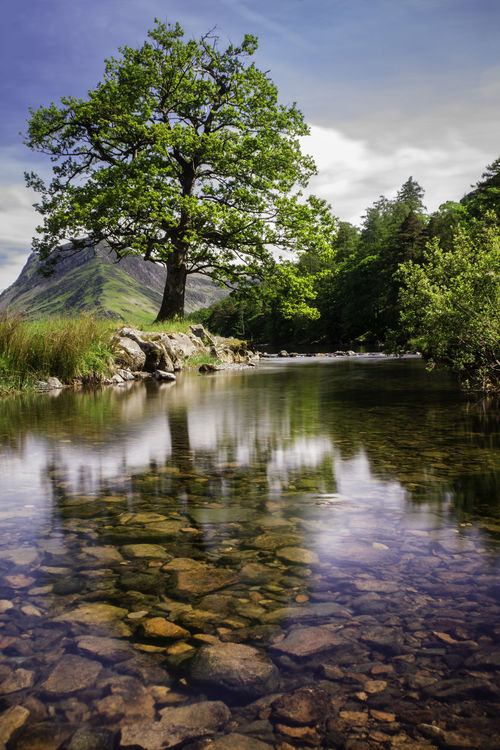 Buttermere, Cumbria Beauty In Nature Day Lake Nature No People Outdoors Reflection Scenics Sky Tranquility Tree Water
