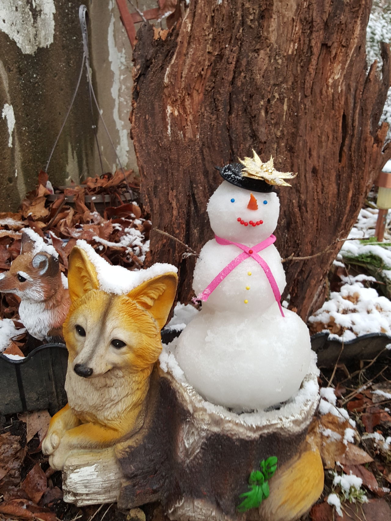 Winter Snowman snow Snow Day Fox🐺 Cold Winter ❄⛄ First Snow