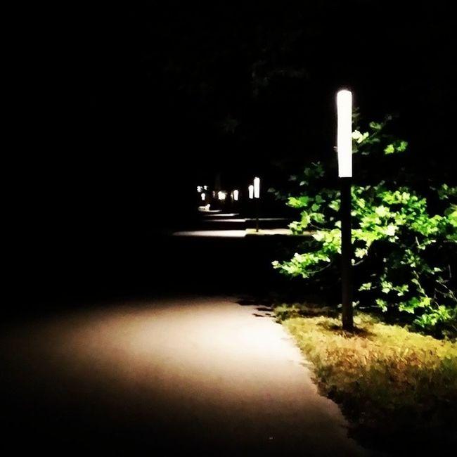 Akad Campus Night Dieser Weg Erleuchtet