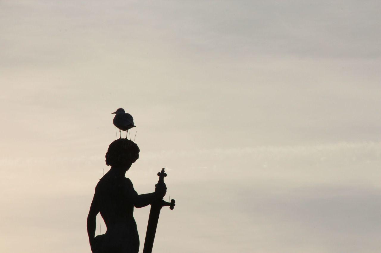Cloud - Sky Day Jardin Du Luxembourg Outdoors Paris People Silhouette Sky Statue Sunset