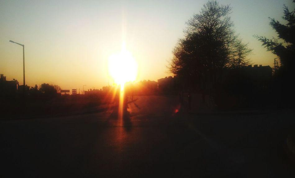 Sunset Sumer Love  :)