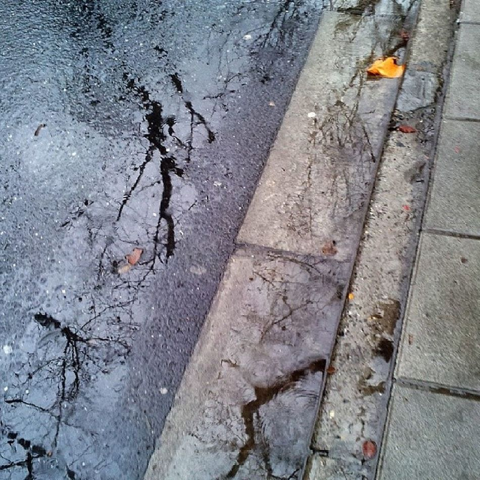 Streetlevel StreetScenes Roadside Rainy Wired Interested Cooling  Peaceful Finding Icy wet