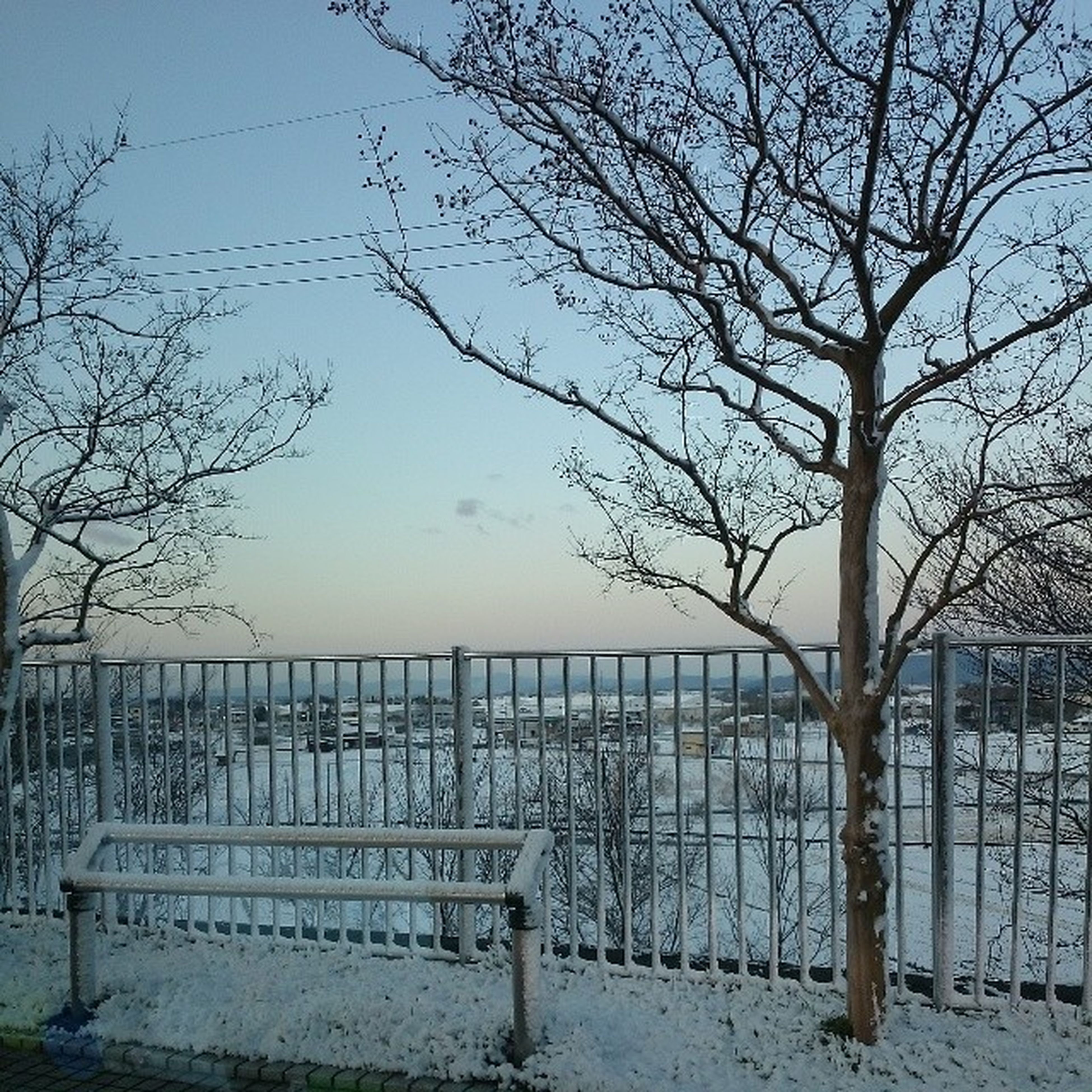 bare tree, fence, tree, railing, winter, sky, branch, cold temperature, tranquility, snow, tranquil scene, nature, protection, scenics, built structure, safety, season, landscape, beauty in nature, weather