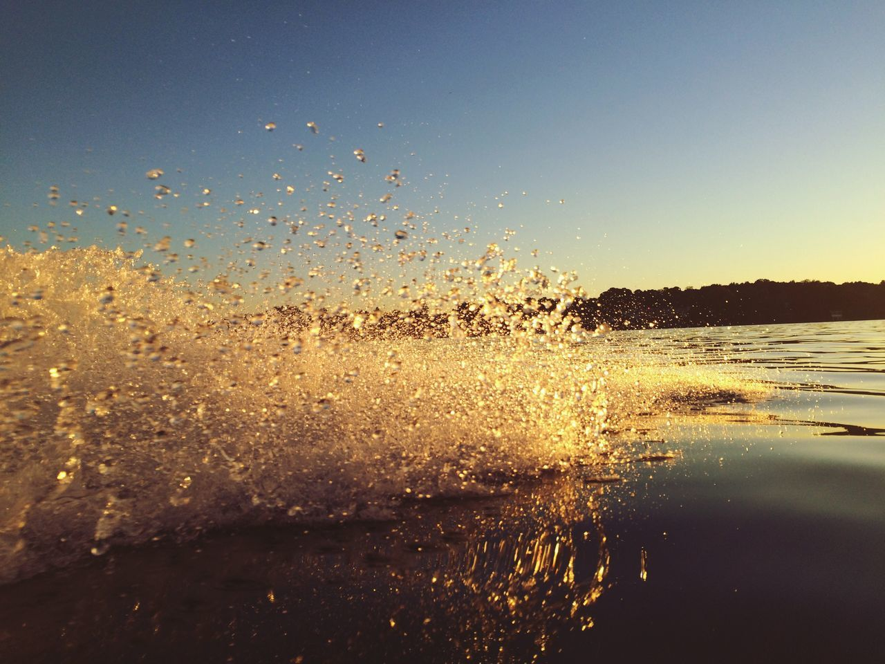 Sundown Someday Boatride Wannsee Berlin I Love The Sun & Water Water Reflections Waterdrops Horizon Over Water Capture The Moment From My Point Of View Speed Need4speed I Love My Dog She Is Always On My Side