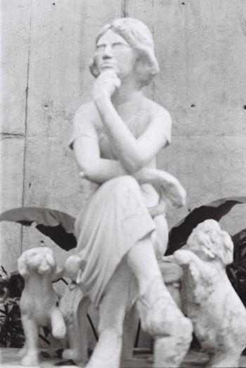 Panchromography Film Photography Sculpture Pentax Spotmatic