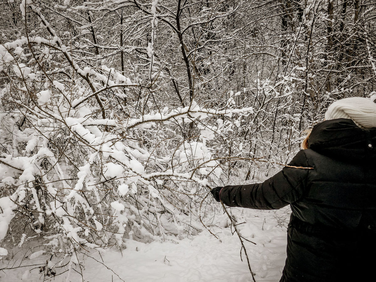 Adult Adults Only Day Enjoying Winter Enjoying Winter Time EyeEm Best Shots Great Outdoors Lifestyles Men Nature One Man Only One Person Outdoors People Playing In The Snow Real People Tree Warm Clothing Winter Walks Winter Wonderland Working