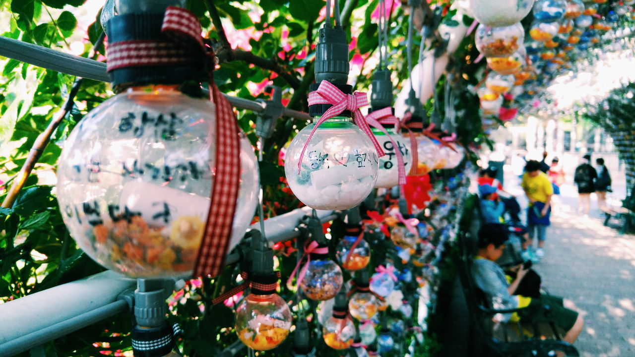 Perspective Photography Message In A Bottle Messages Love Ribbons Lightbulb Bokeh Flowers Looking Down