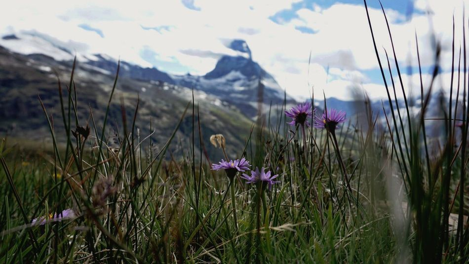 Matterhorn SonyAlpha6000 Nature Landscape Mountain Sky Clouds Lake Reflection