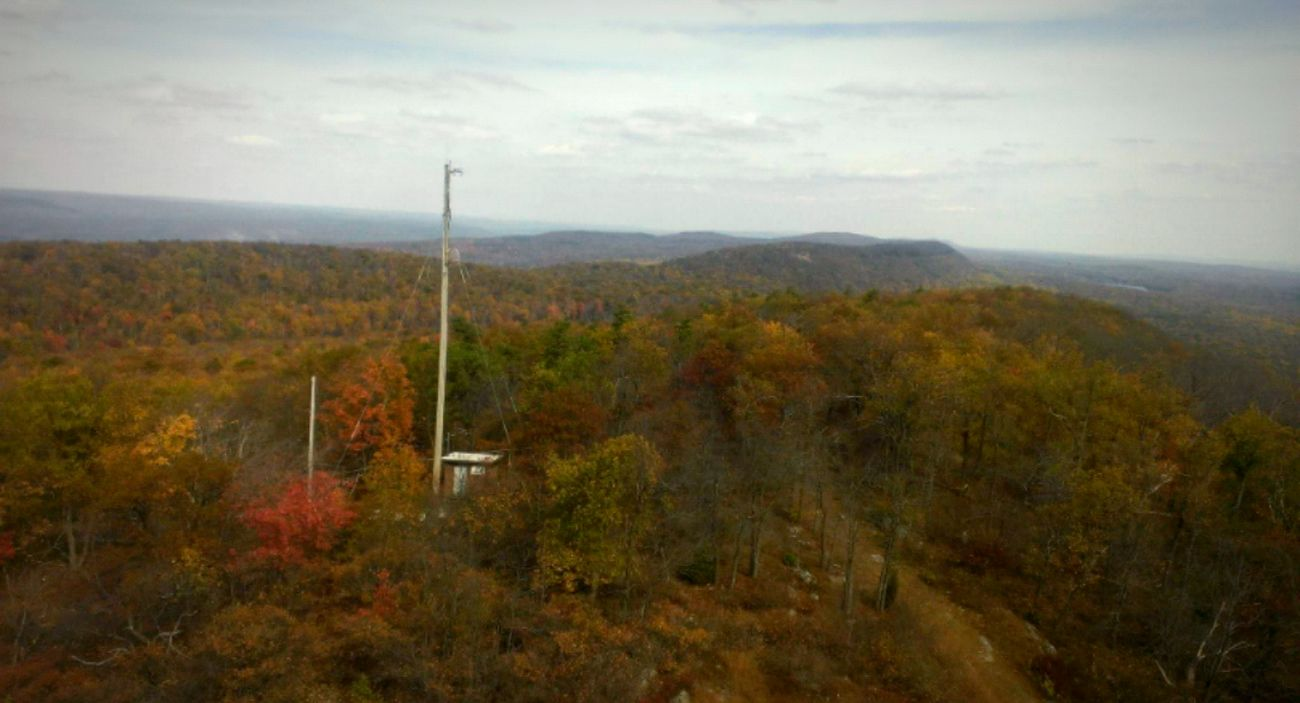 View from a NJ fire tower. Landscapes With WhiteWall Hiking Forest Nature Hikingadventures Views From The Top Firetower Firetowershots Windowsphone WindowsPhonePhotography Throwback