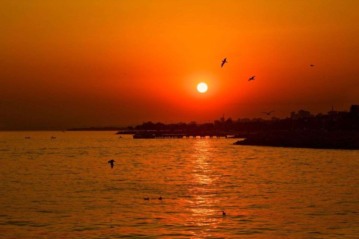 bisgen instagood Hanging out Relaxing sea sunset Beautiful Great Performance Taking Photos Seagulls enjoying life amazing popular Great atmosphere instamood eye4photography  by Ersin Bisgen