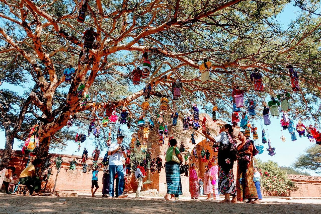 tree, real people, large group of people, leisure activity, men, women, day, lifestyles, growth, nature, outdoors, branch, full length, beauty in nature, sky, adult, people, adults only