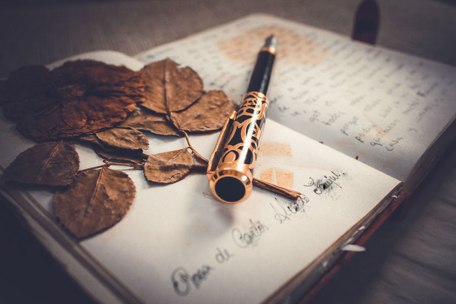 Close-up Day Dried Plant Indoors  Journal Lieblingsteil No People Old-fashioned Paper Pen Penknife Rose🌹 Table Text Vintage Writing Writing Instrument Diary Page