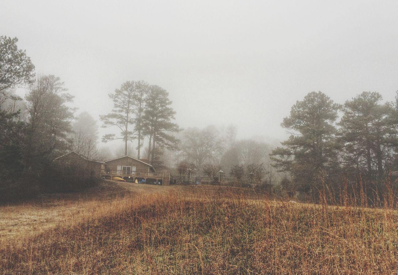 Mist Landscape Tadaa Community
