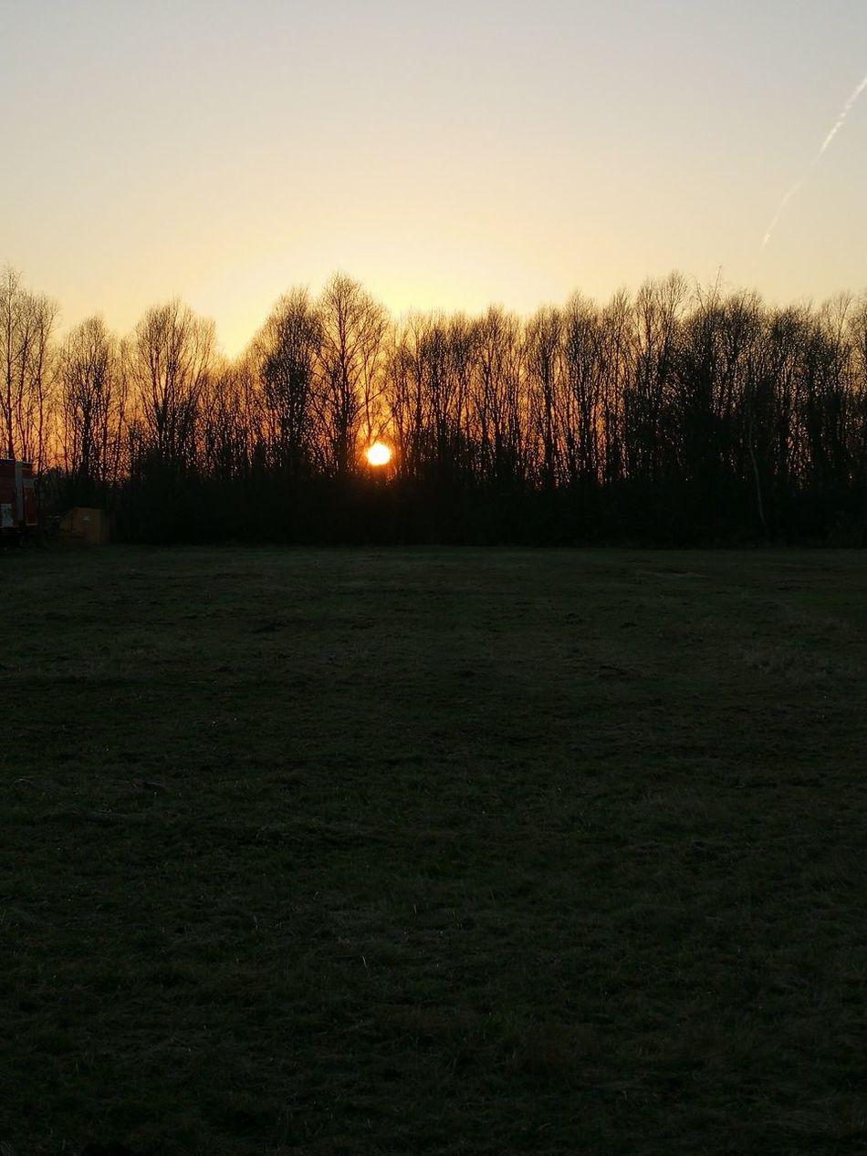 364/365 Sonnenuntergang Photo365 Bilsbekblog Eyeemgermany Sorcerer86 Photooftheday Eyeempinneberg Huaweiography Huaweimate9