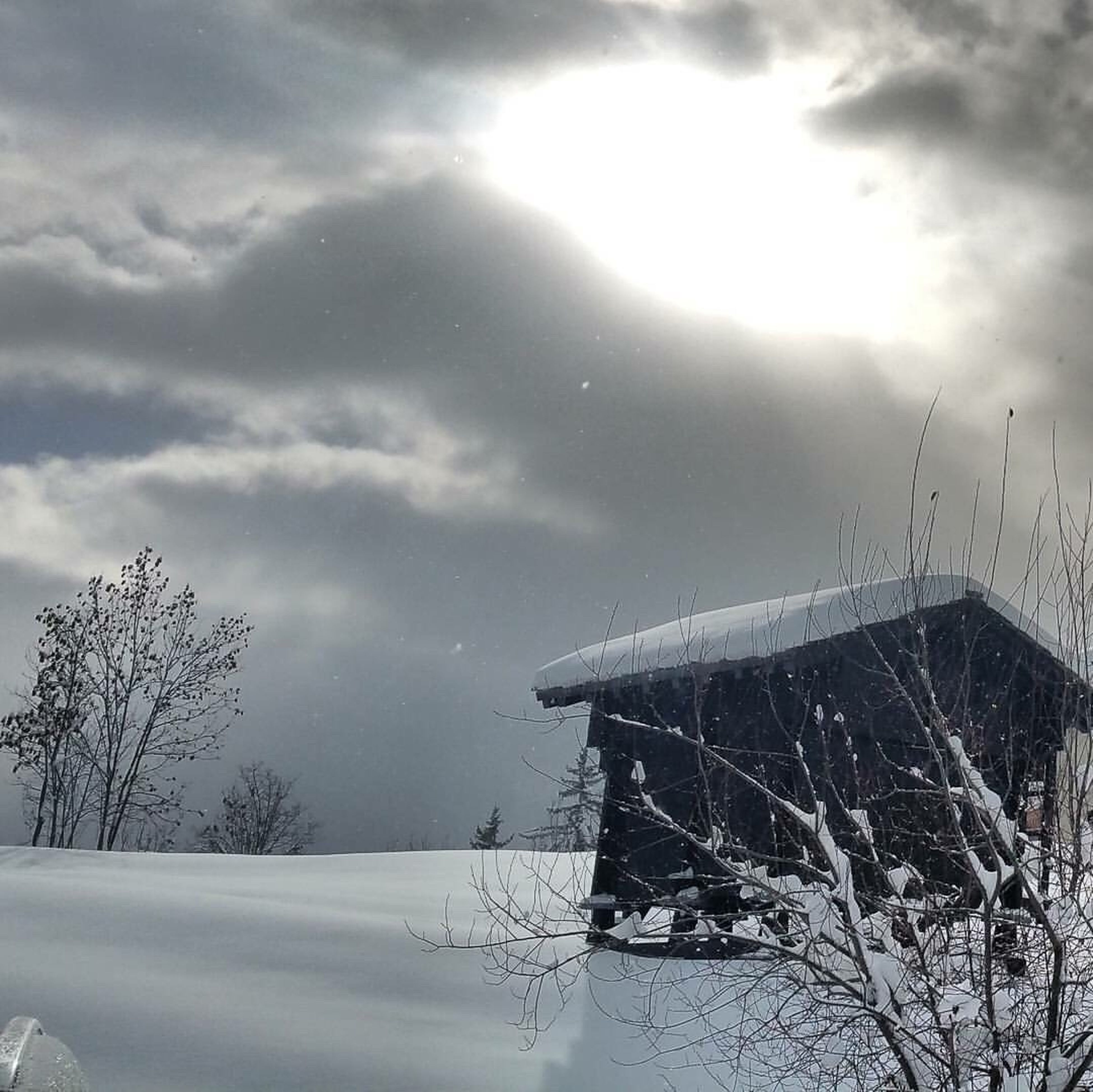 winter, snow, weather, cold temperature, sky, no people, cloud - sky, nature, bare tree, tree, landscape, day, outdoors, built structure, scenics, beauty in nature, architecture, tranquility, building exterior, windmill
