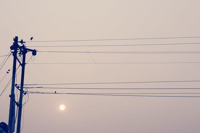 SastaFotu Animato Lightpole in Kanpur India Bharat