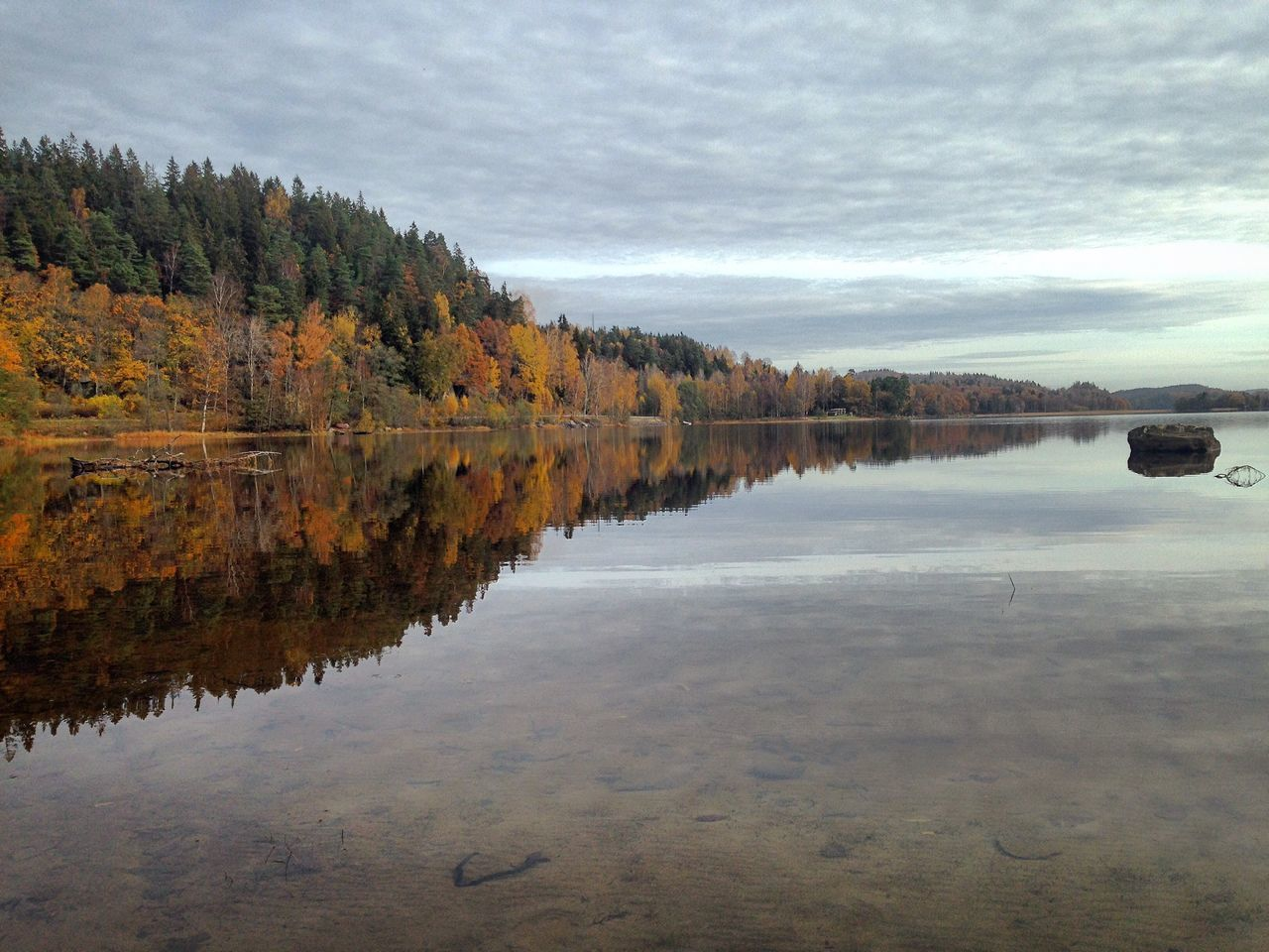Autumn Lake Reflection . Nature Sweden Outdoors LakeReflection Transparent Water IPhoneography Iphone6s Mobilephotography