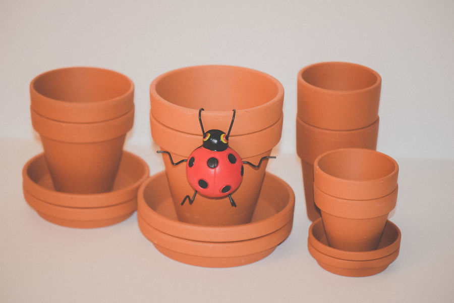Clay Clay Pots Group Of Objects Lady Bug Plant Life Plant Lover Plant Lovers Planter Pot Planter Pots Stacked Stacks  Variation White Background