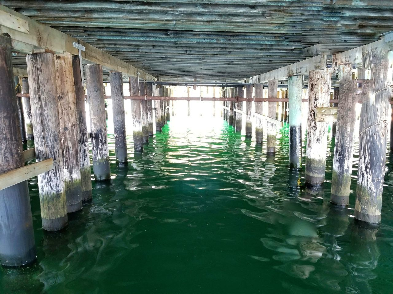 Ocean Pier Water Water Sea Day Swimming Pool Built Structure No People Architecture Indoors