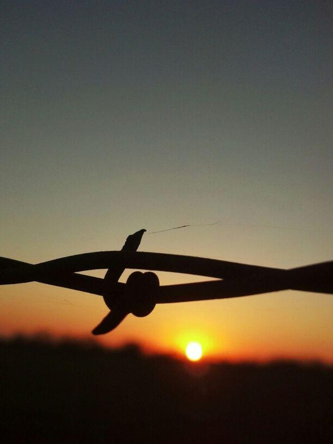 Sunset Texas Sky Barbed Wire Wednesday Razorsharpsky