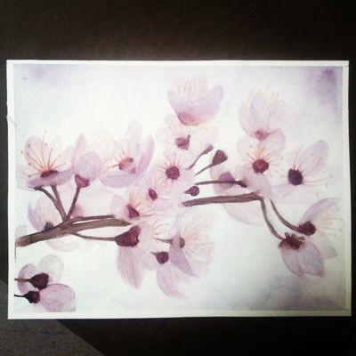 Cherry blossoms Todayinart