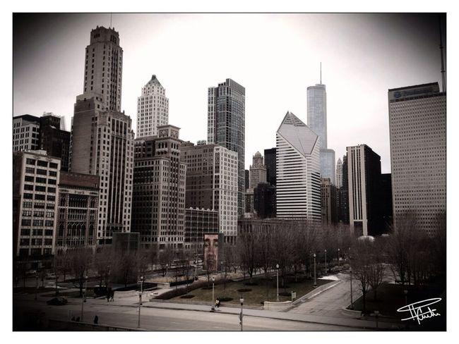Chicago Views Divearchitecture