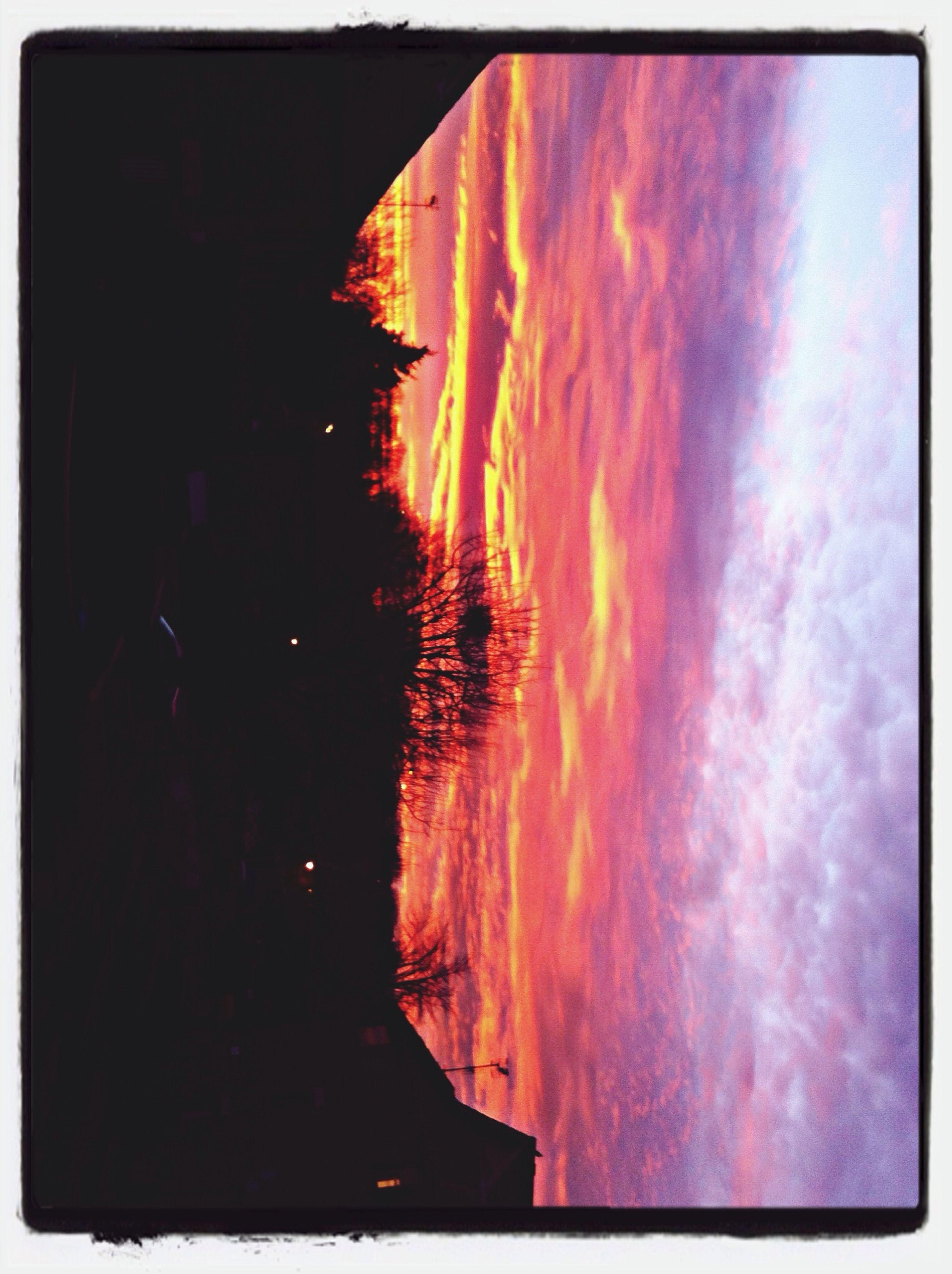 Sunset Sightseeing Love