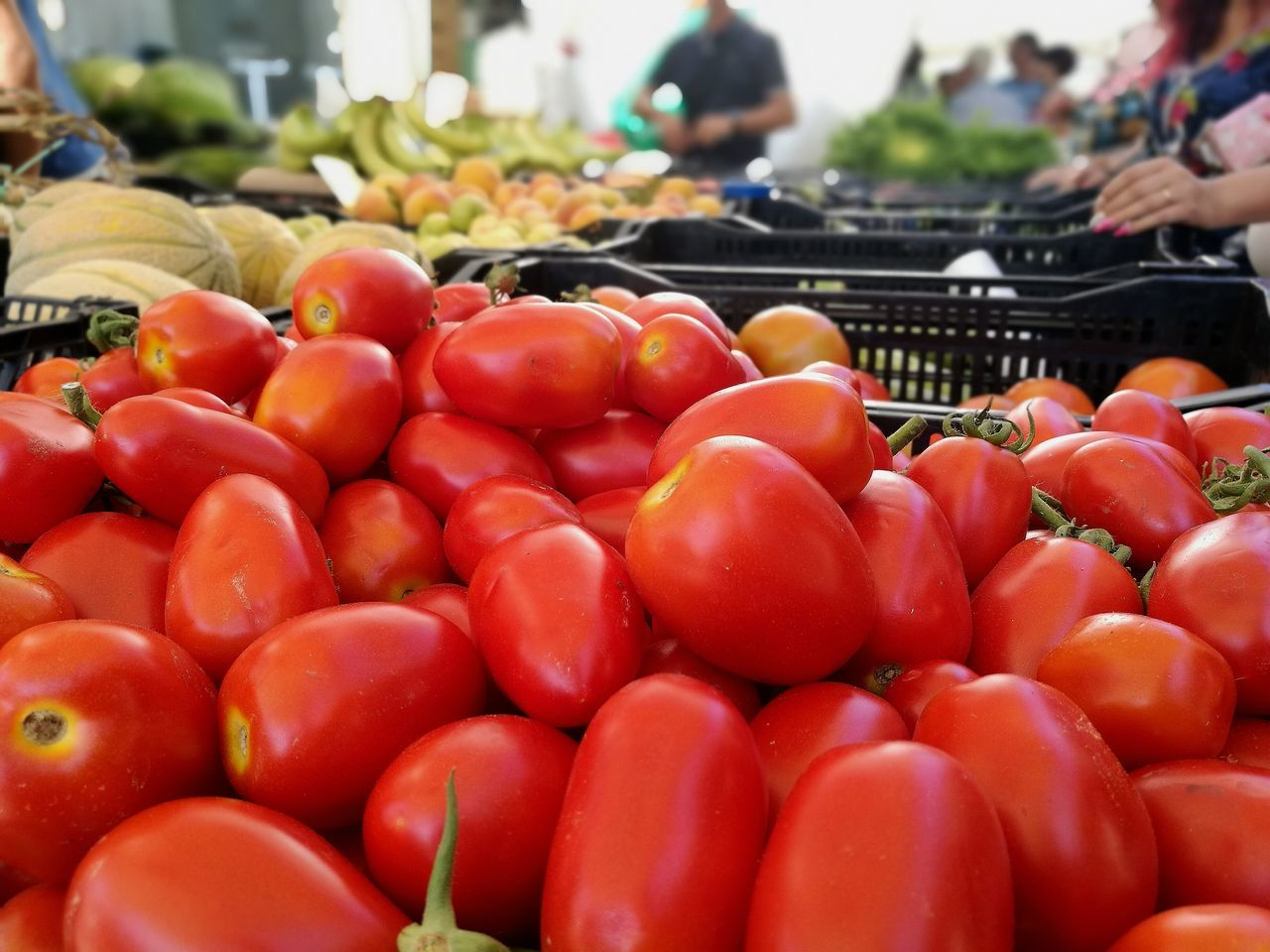 Market Retail  Freshness Market Stall Healthy Eating For Sale Food Food And Drink Fruit Abundance Red Large Group Of Objects Vegetable Choice Business Finance And Industry Heap Consumerism Tomato Stack Outdoors