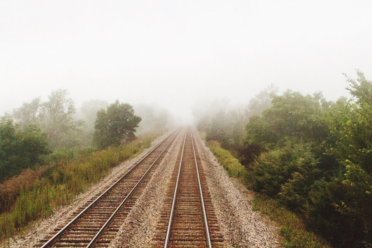 railroad track, transportation, rail transportation, tree, fog, no people, day, the way forward, railway track, outdoors, nature, landscape, railroad tie, growth, sky, beauty in nature