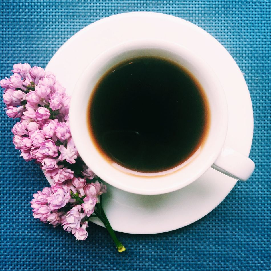 Beautiful stock photos of cup, , Auto Post Production Filter, Blue Background, Coffee