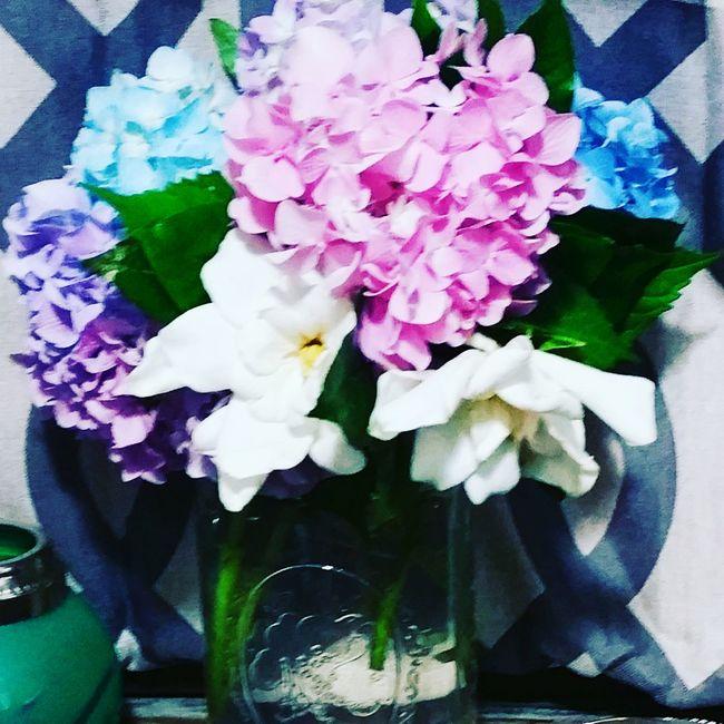 The Essence Of Summer Country Living Hydrangea Gardenia freshcutflowers