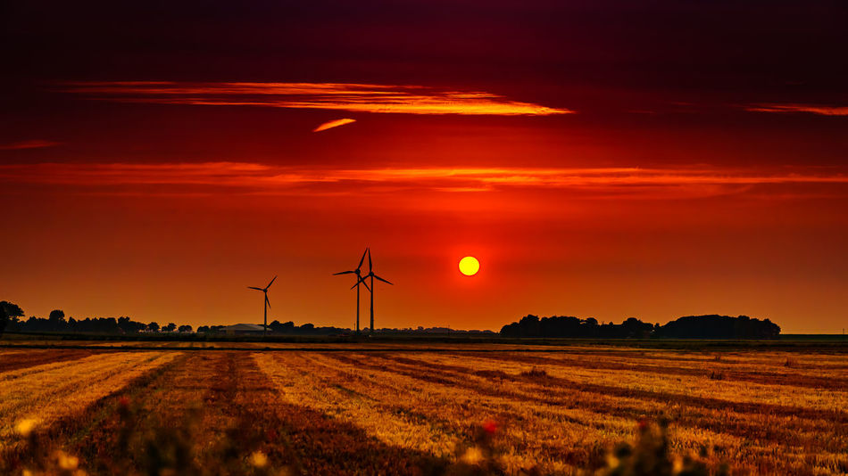 Agriculture Alternative Energy Beauty In Nature Capture The Moment Day Field Fuel And Power Generation Industrial Windmill Landscape Nature Nature_collection No People Orange Color Outdoors Rural Scene Scenics Sky Sun Sunset Technology Tranquil Scene Tranquility Wind Power Wind Turbine Windmill
