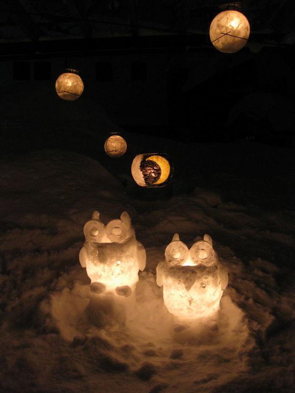Otaru Owl Owls Snow Snow Art Snow Candles Snowlight Winter Yukiakari