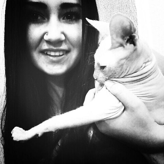 Cat Sphinx ♡