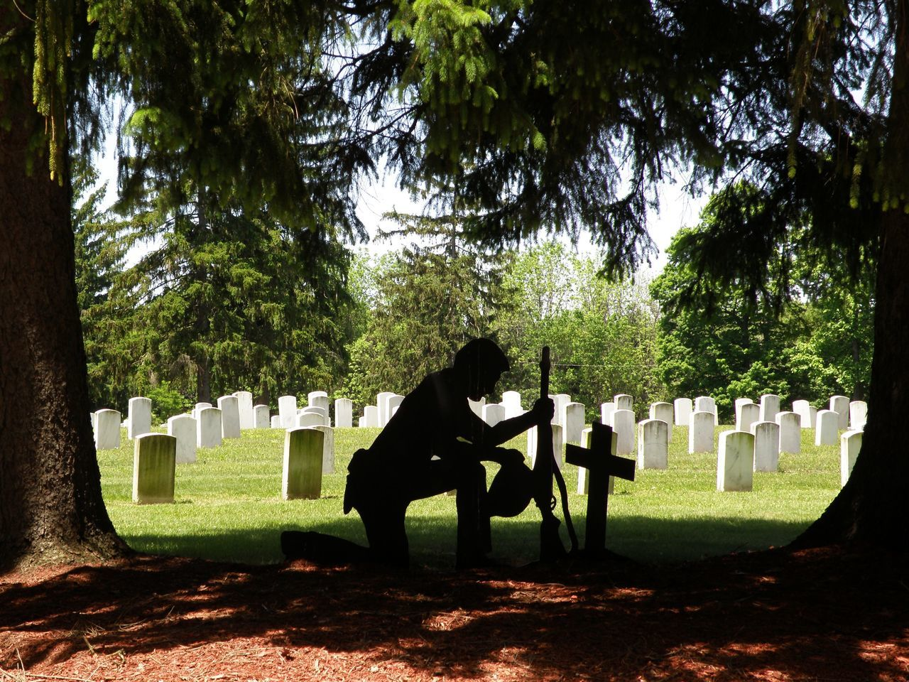 Beautiful stock photos of veteran's day, Army Soldier, Cemetery, Christianity, Cross