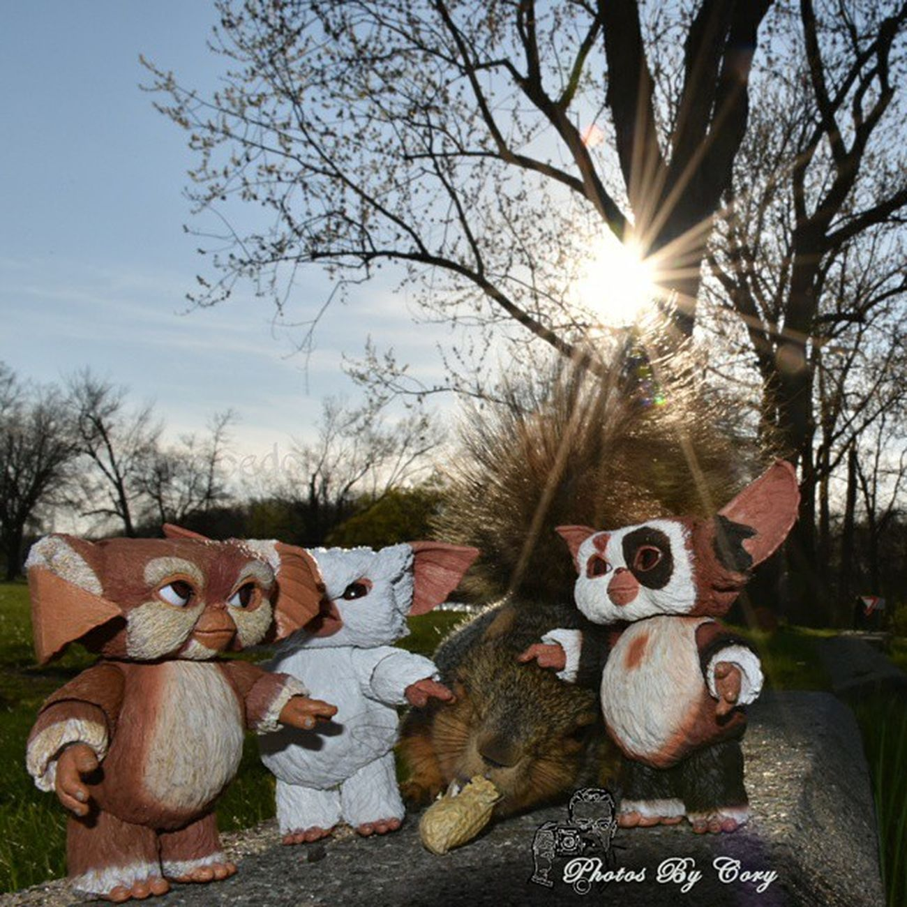 Gary! Stop poking the squirrel in the eye! Why can't you pet him nice like Zoe and Patches? Neca Necatoys Funwiththesquirrels FunWithMogwaiGary FunWithMogwaiZoe FunWithMogwaiPatches
