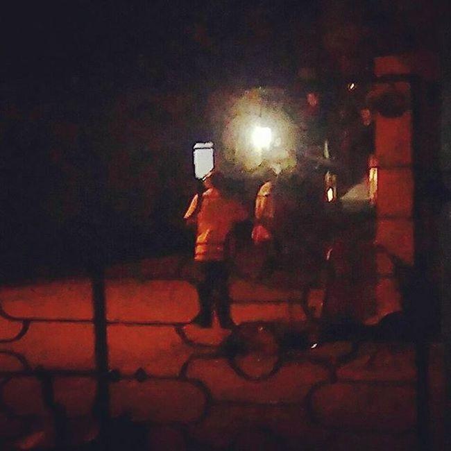 Nightwalkers Light Road Roomview