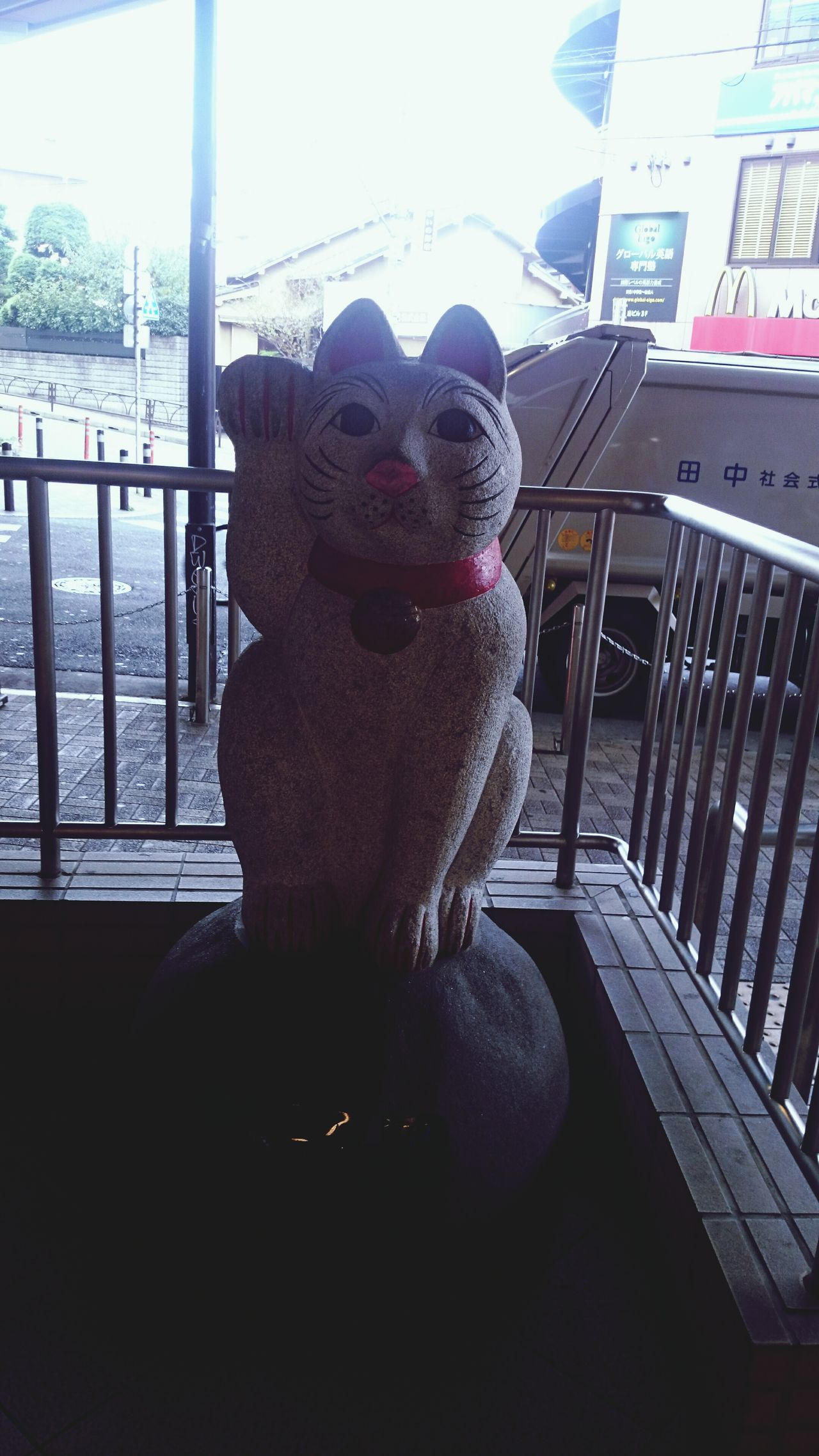 Welcome fortune cat Cat Beckoning Cat 招き猫