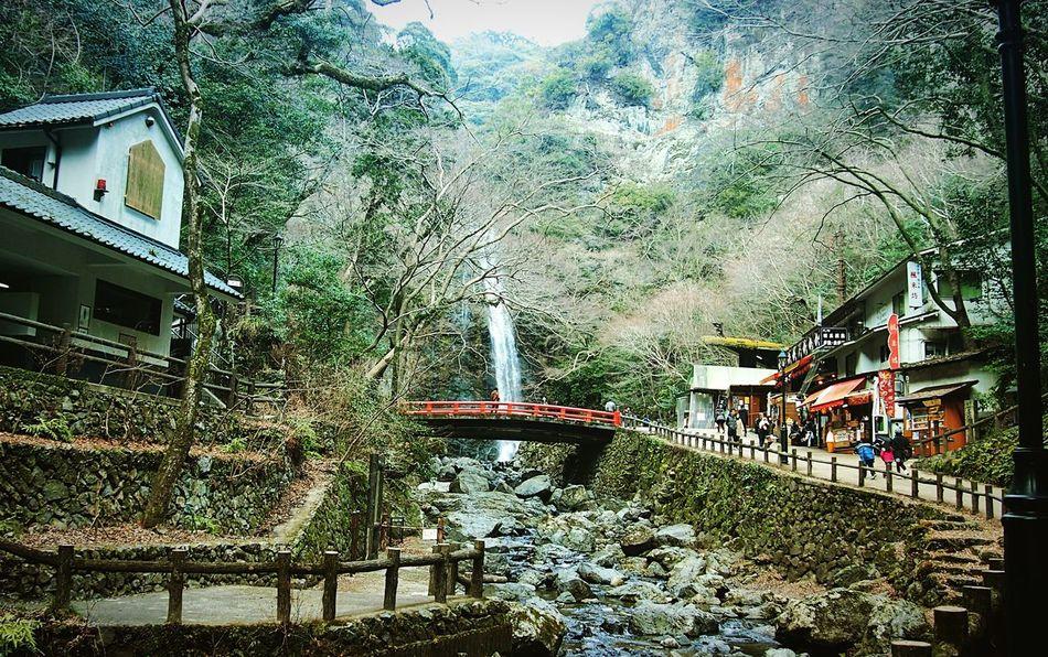 箕面の滝 箕面 Osaka,Japan Outdoors Nature Beauty In Nature 3XSPUnity Travel Destinations Hello World Relaxing Enjoying Life