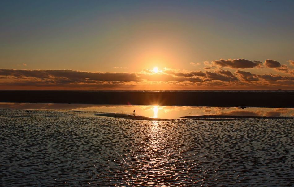 Sunset Langeoog Beautiful Water Reflections Reflection Nature Beach Sea Beachview Relax