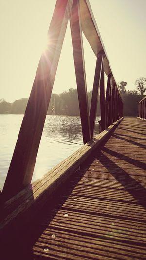 Bridge Jersey Jersey Channel Island UK Resovoir Lake Summer Spring Wood Pond Sun St Saviours Walk Beautiful Wild Nature