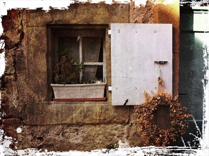Divearchitecture Dans La Fenêtre